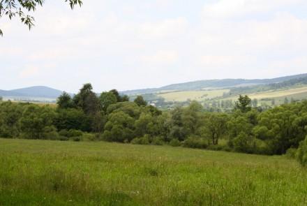 Wilsznia, Smereczne, Ropianka – wsie, których już nie ma