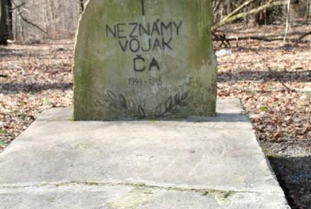 Svidník i okolice.