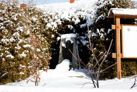 Zima w Nowicy