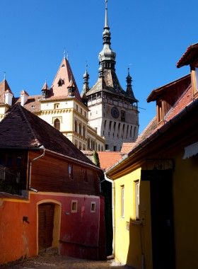 Transylwania 2013