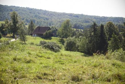 Bartne, Bodaki